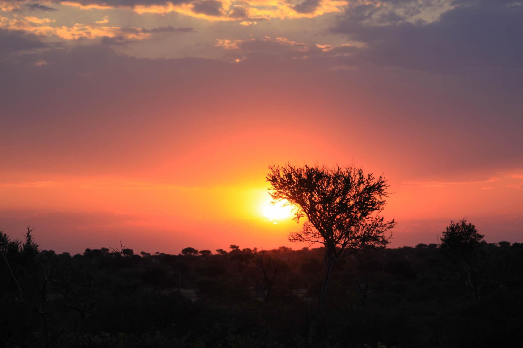 soleil_afrique_photo_caripa